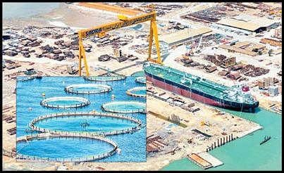 جایگاه صنایع دریایی در اقتصاد ایران