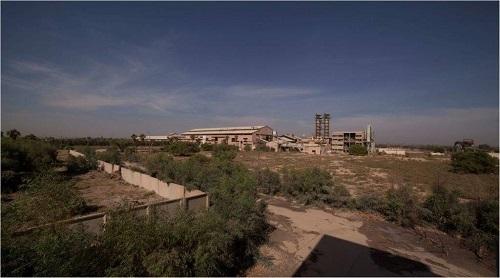 فاز اول کارخانه قند دزفول همزمان با دهه فجر افتتاح می شود.